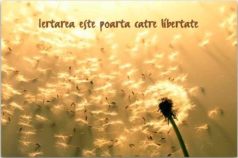 iertare_libertate